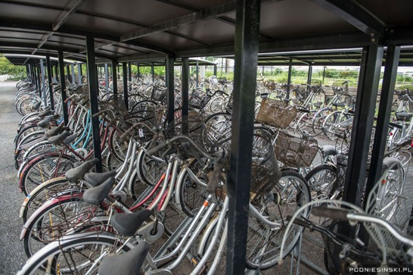 fukishima_bicicletas