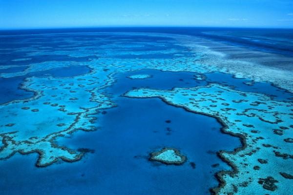 grande barreira de coral_3