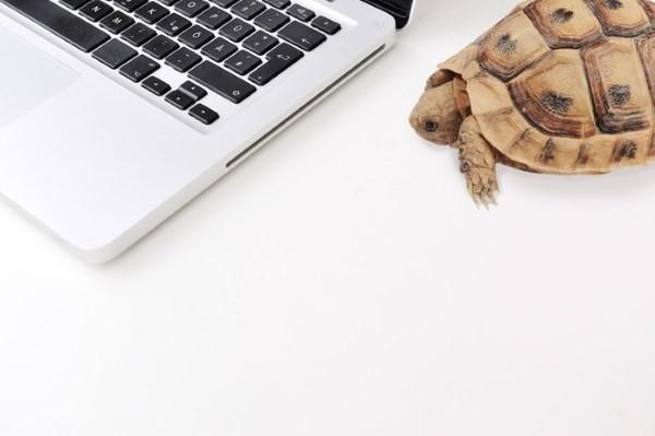 internet-slow