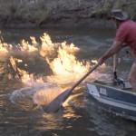 Deputado australiano incendeia águas do rio e denuncia poluição