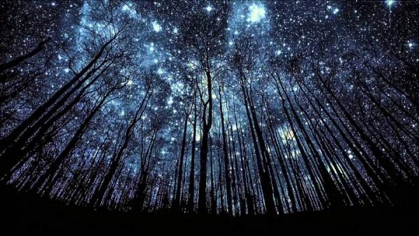 stars_1