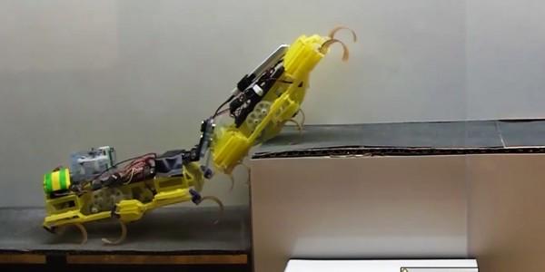 mini robo