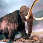 Clonagem de mamutes extintos há milhares de anos já começou