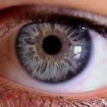 Olho Humano é tão sensível que pode detectar um fotão