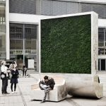 Árvore com tecnologia instalada ajuda a diminuir poluição
