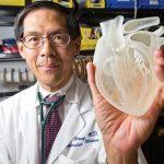 Impressora 3D constrói coração artificial