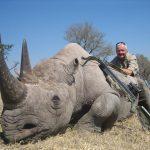 Extinção da vida selvagem está a acontecer a passos largos