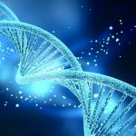 Criado teste sanguíneo que pode detetar cancro a partir do ADN