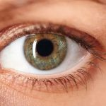 Cegueira causada por Retinose Pigmental pode ser reversível
