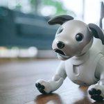 Aibo, o cão robot da Sony que só lhe falta ter vida