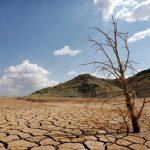 Acordo de Paris insuficiente para travar Aquecimento Global