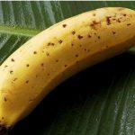 Japoneses criaram um novo tipo de banana, para comer com casca