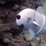 Peixe robô procura respostas nos oceanos