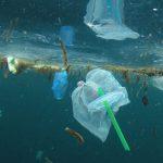 Reino Unido quer proibir venda de palhinhas de plástico para evitar poluição dos oceanos
