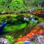 Caño Cristales – O rio das sete cores que parece tirado do paraíso