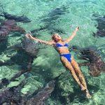 Instagrammer é mordida ao nadar com tubarões nas Bahamas
