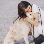 Petify.io – a plataforma de adoção e resgate de animais