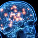 O que acontece no cérebro no momento em que morremos?
