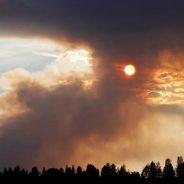 Chuva em Portugal, incêndios na Suécia, calor que mata no Japão… Assim anda o mundo