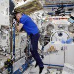 NASA revela imagens em vídeo gravado a 8K de astronautas na Estação Espacial Internacional